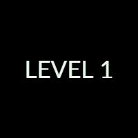 Level 1 Exam