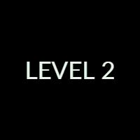Level 2 Exam